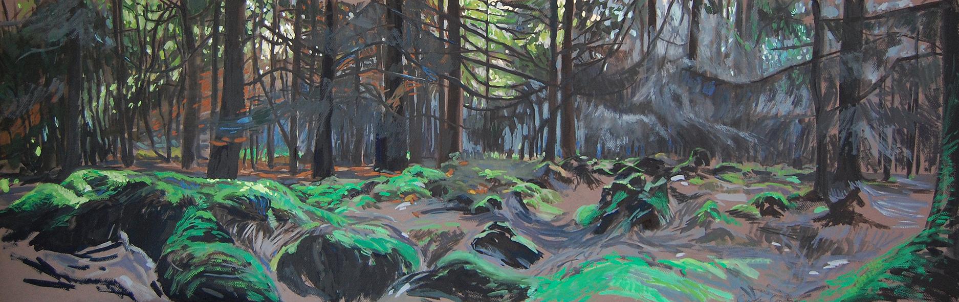 forêt du gars site
